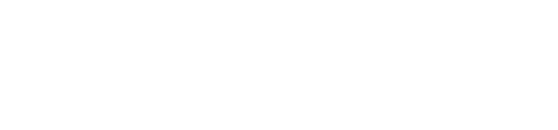Benor logo footer
